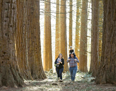 A family takes their young children on a walk through the San Bernardino National Forest.